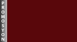 GMN315-32   P.BORDO
